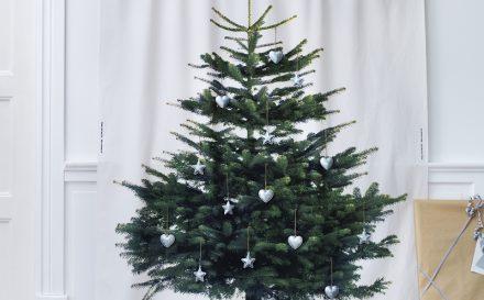 Photo tissu - sapin de Noël sur toile